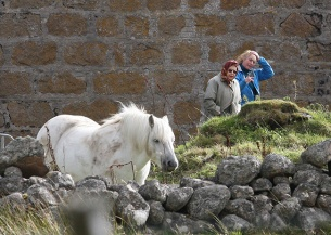 the-queen-and-horse-in-balmoral-z