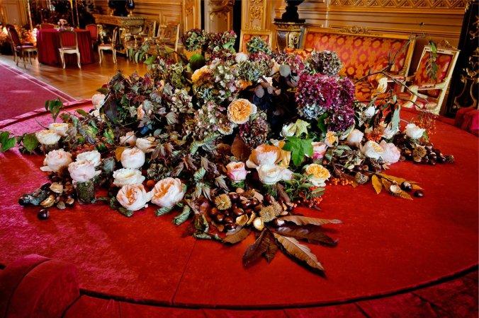 eu flowers 4