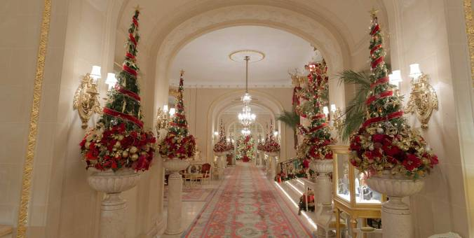 Christmas-trees-in-lobby
