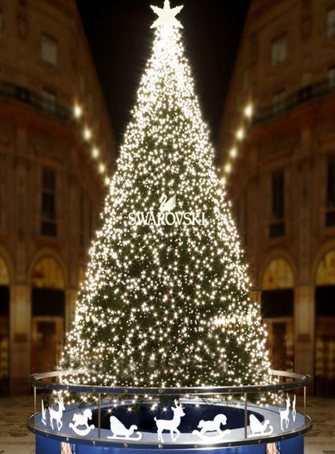 albero milano 2018