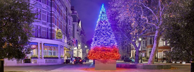 christmas-tree-2018-connaught