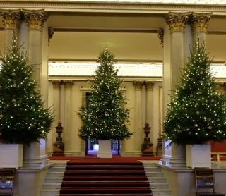 christmas tree buckingham palace 2018