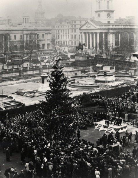 trafalgar tree 1947