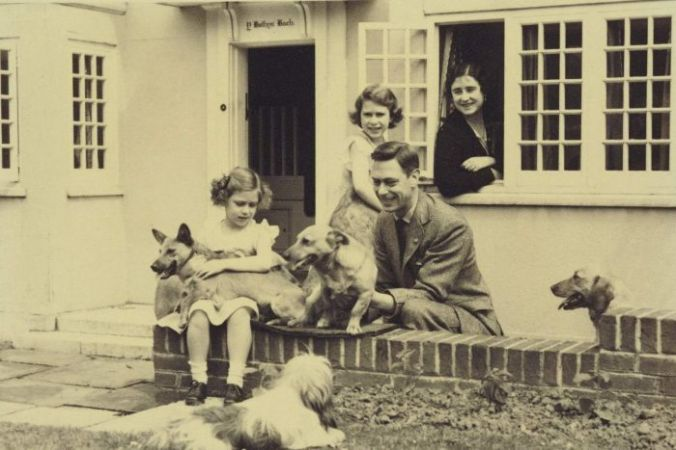 corgi&family