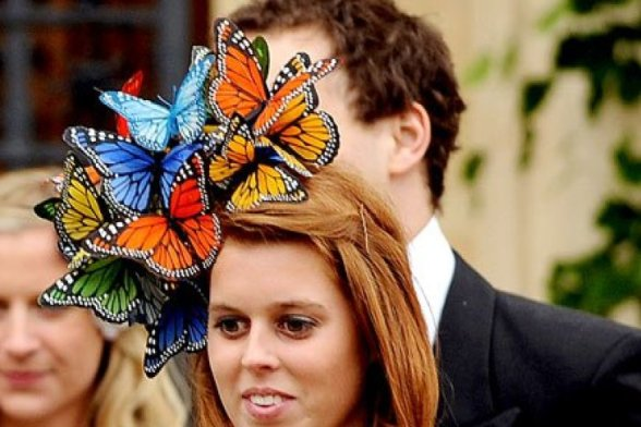 butterflies fascinator